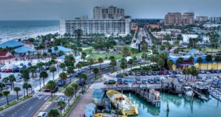 Things to do in Clearwater FL
