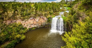 things to do in Coffs Harbour 3