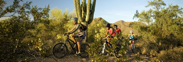 things to do in scottsdale Sonoran Desert