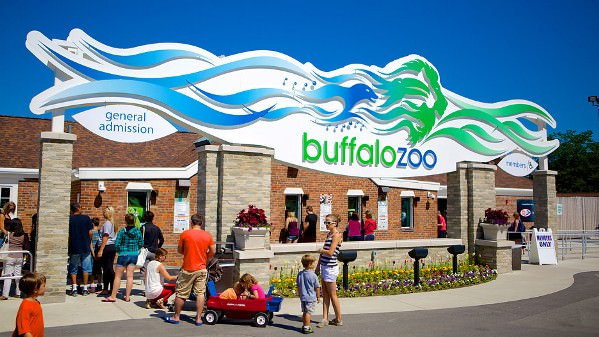 Things to do in Buffalo NY Buffalo Zoo