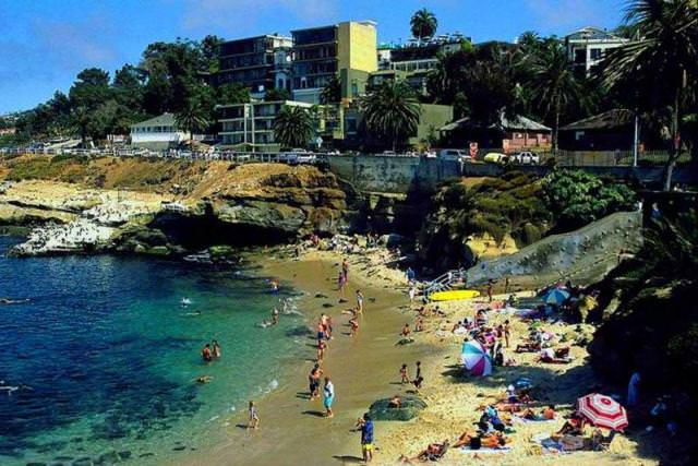 Things to do in San Diego La Jolla Beach