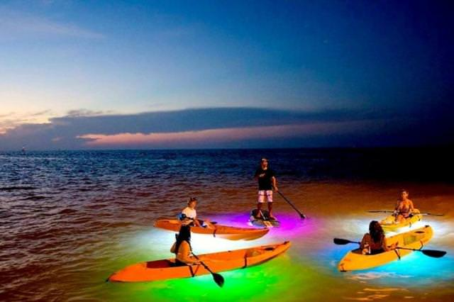 Things to do in Sarasota Siesta Key Water sports & Paddle boards