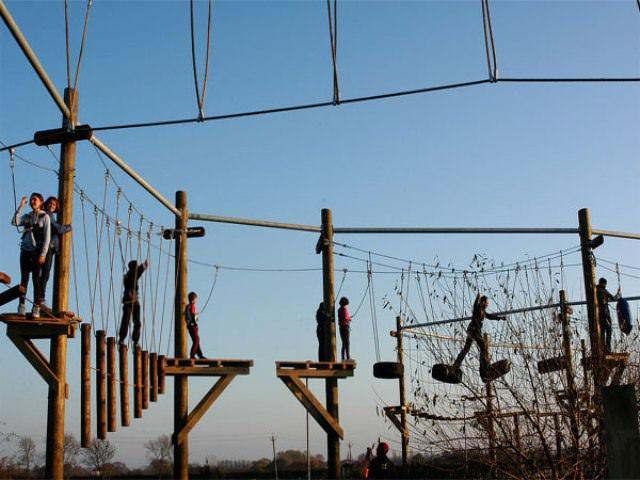 Things to do in York The Web Adventure Park