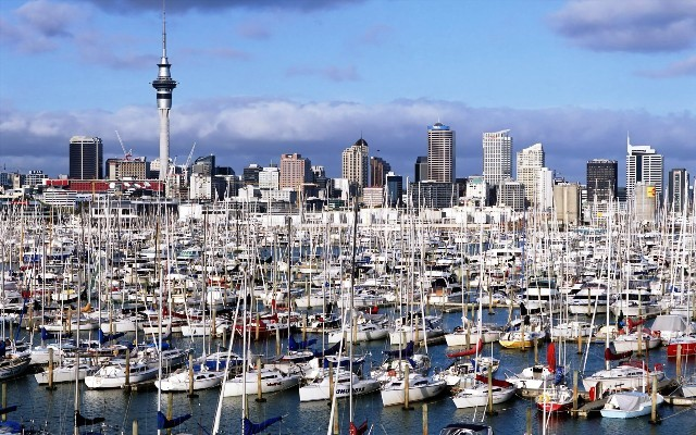 Things to do in Auckland waitemata harbour
