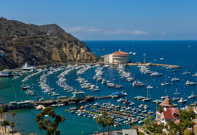 Things to do in California Santa Catalina Island