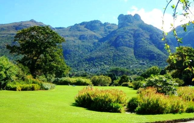 Things to do in Cape Town Kirstenbosch