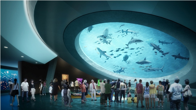 things to do in miami florida museum of science