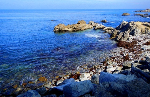 Things to do in Northern California monterey bay