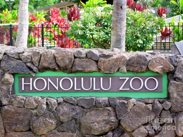 things to do in waikiki honolulu zoo